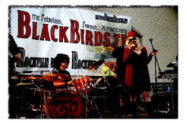 Tommy, Drummer (2008) - the famoux xtraordinary blackbirds.tv