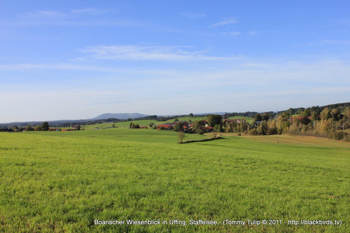 Boarischer Wiesenblick in Uffing, Staffelsee