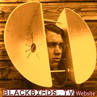 Blackbirds.tv - Berlin fletscht seine Szene!