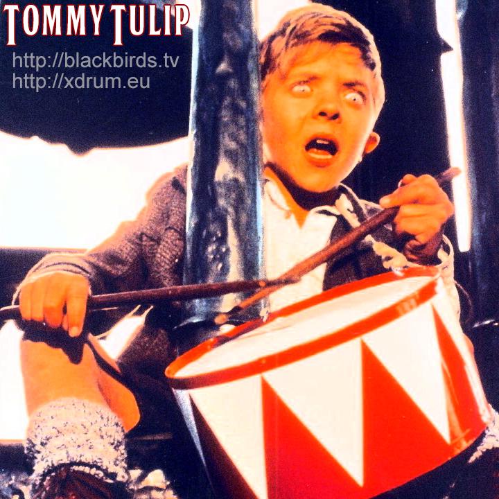 Tommy.Tulip_Profilbild_Oskar.Matzerath