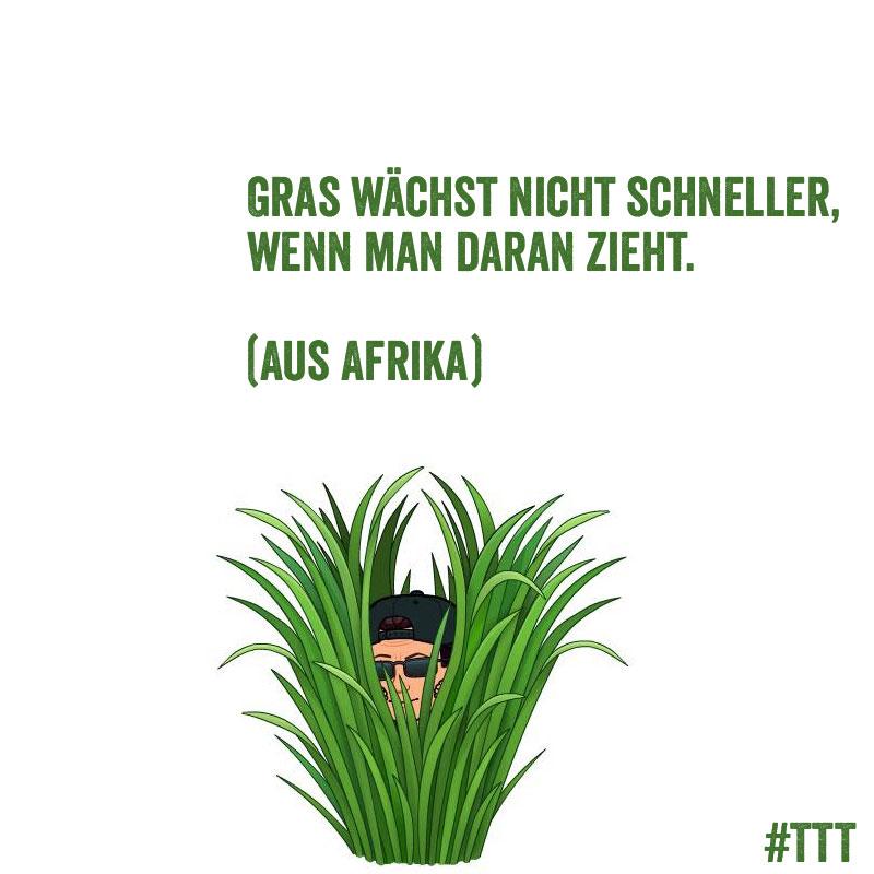 Gras wächst nicht schneller, wenn man daran zieht. (Aus Afrika) #Zitate