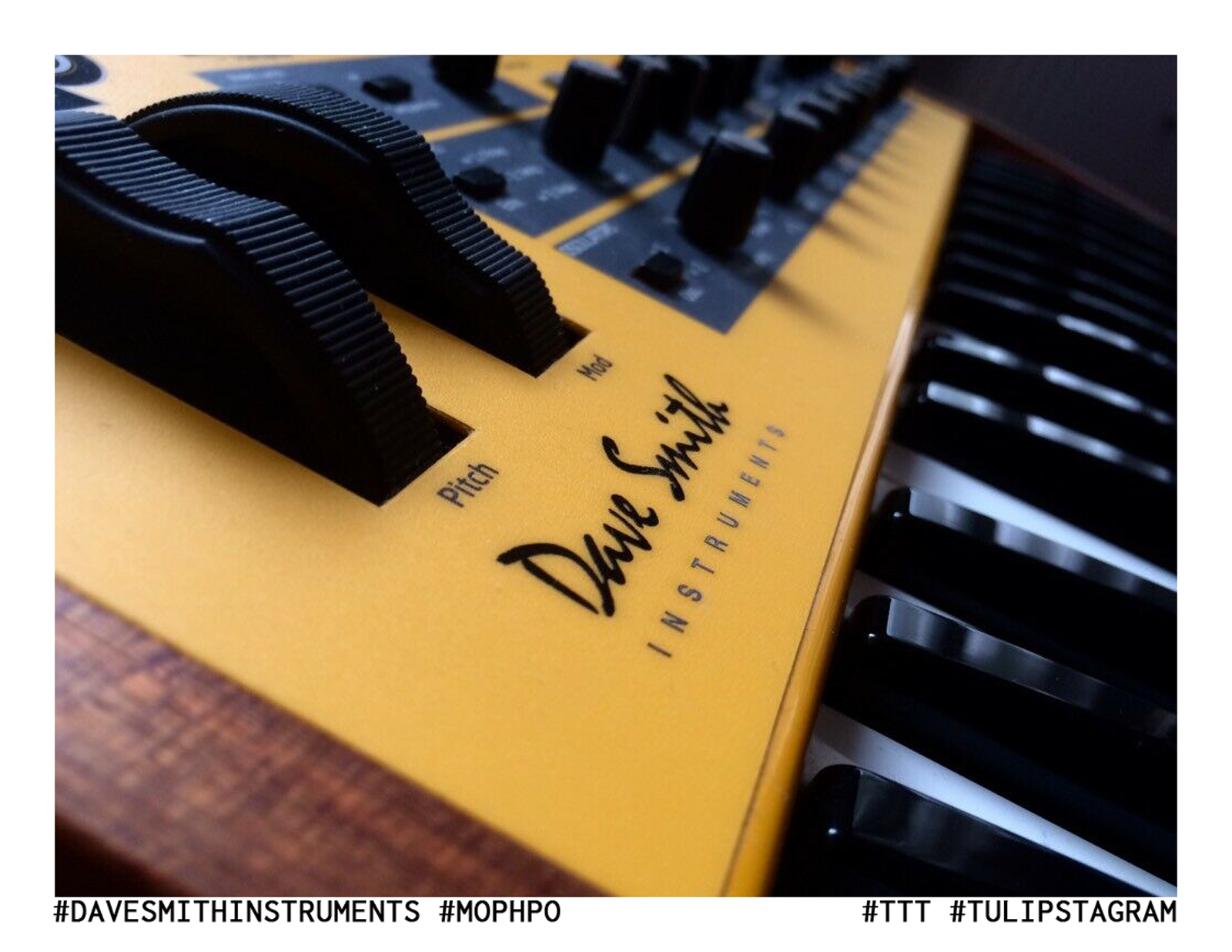 #davesmithinstruments #mopho (Quelle: Hersteller) #vergriffen #TTT #Tulipstagram
