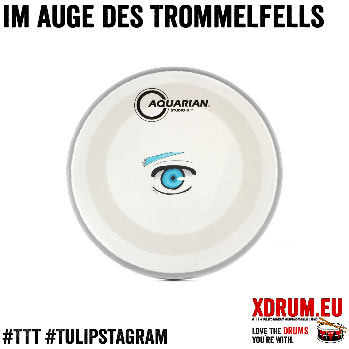 Im Auge des Trommelfells #TTT #Tulipstagram #ImAugedesTrommelfells #DrumsmakeWumms